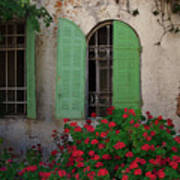 Green Windows And Red Geranium Flowers Poster