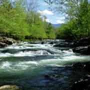 Greenbrier River Scene Poster