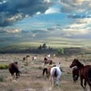 Greener Pastures Poster
