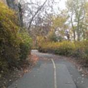 Greenway Trail In The Fall Poster