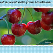 Greeting Card - Cherries #1 Poster