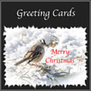 Greeting Card Cover Photo Poster