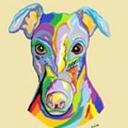 Greyhound Poster by Eloise Schneider