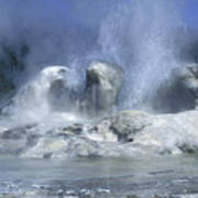 Grotto Geyser - Yellowstone National Park Poster