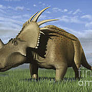Group Of Dinosaurs Grazing In A Grassy Poster