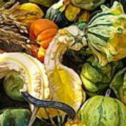 Group Of Gourds Expressionist Effect Poster