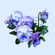 Group Of Purple Pansies And Leaves Poster
