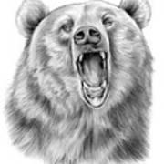 Growling Bear Poster