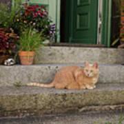 Guarding The Door Poster