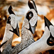 Guineafowl Family Poster