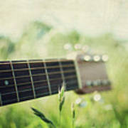 Guitar In Country Meadow Poster