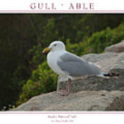 Gull Able Poster