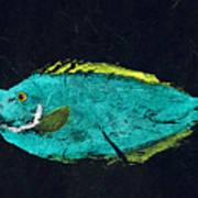 Gyotaku Mu Mu Poster