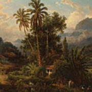 Hacienda De San Esteban De Puerto Cabello, Venezuela Poster
