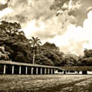 Hacienda La Elvira Poster