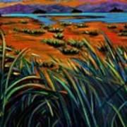 Haida Gwaii Sunrise Poster by Faye Dietrich