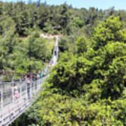 Haifa Hanging Bridge Poster