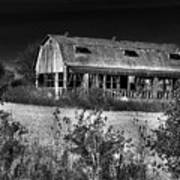 Hainesville Barn B/w Poster