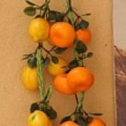 Hanging Fruit Poster
