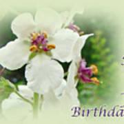 Happy Birthday - Floral - Moth Mullein Poster