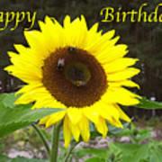 Happy Birthday - Greeting Card - Sunflower Poster
