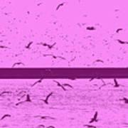 Harbor Gulls Purple Poster