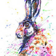 Hare In Grass Poster