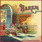 Harem Vintage Fruit Packing Crate Label C. 1920 Poster