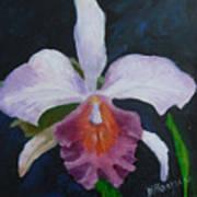 Hartford Orchid Poster