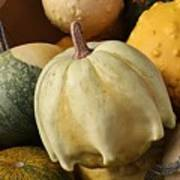 Harvest Of Gourds Poster