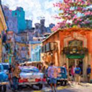 Havana In Bloom Poster