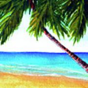 Hawaiian Beach Palm Trees  #425 Poster