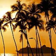 Hawaiian  Cruise Poster