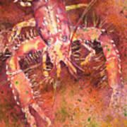 Hawaiian Lobster Poster
