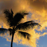 Hawaiian Sunset Hanalei Bay 5  Poster
