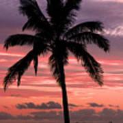 Hawaiian Sunset With Coconut Palm Tree Poster