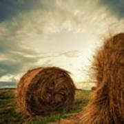 Hay Bales On Farm Field Poster