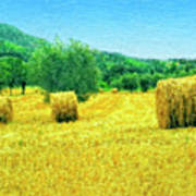 Hay Harvest In Tuscany Poster