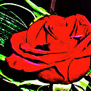hdr 263 - Red Red Rose  Poster
