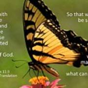 Hebrews Scripture Butterfly Poster