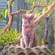 Hemingway Cat Poster