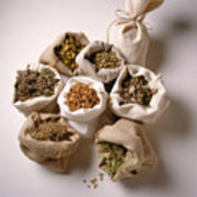 Herbal Teas And Seeds Poster