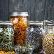 Herbs In Jars Poster