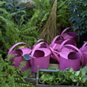 Herd Of Watering Cans Poster