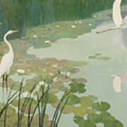 Herons In Summer Poster