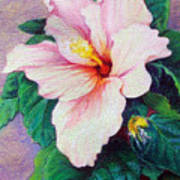 Hibiscus Light Poster