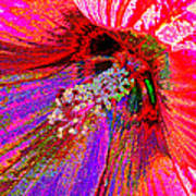 Hibiscus Macro Abstract Poster
