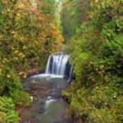 Hidden Falls In Autumn Poster