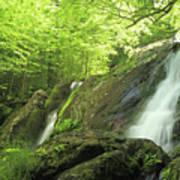 Hidden Falls - Shenandoah National Park. Poster