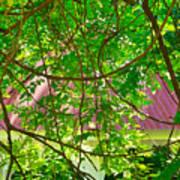 Hidden In The Garden Poster